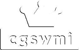 Cgswmi